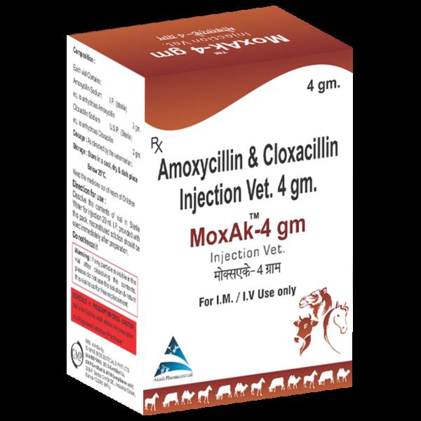 Amoxycilin & Cloxacilin Injection