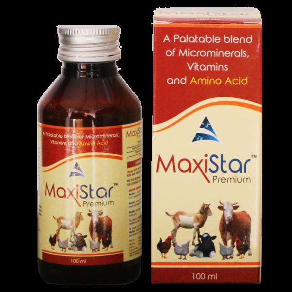 Maxistar Premium Syrup