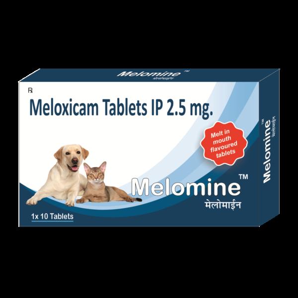Meloxicam Tablets 2.5mg