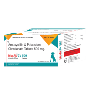 amoxicillin and potassium clavulanate tablets ip 500 mg