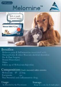 Melomine Tablets Brochure